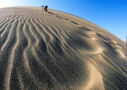 这座沙漠不但不治沙,还除草 原因让人哭笑不得